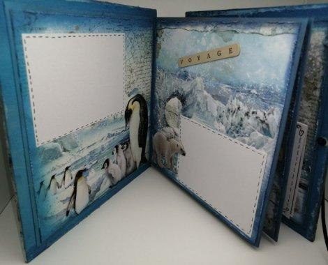 201 accordéon artic antarctic