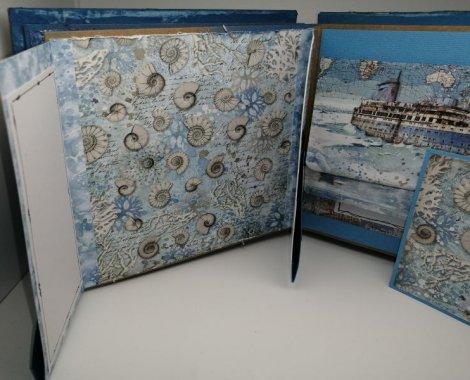 206 accordéon artic antarctic
